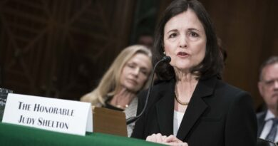 Who is Judy Shelton? Trump's controversial Fed nominee, explained