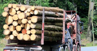 Why are lumber prices skyrocketing? The lumber shortage and housing boom, explained.